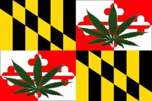 tokeofthetown2013 maryland flag